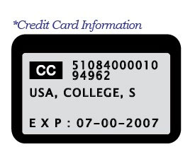 ViAge Solutions – Credit Card Information